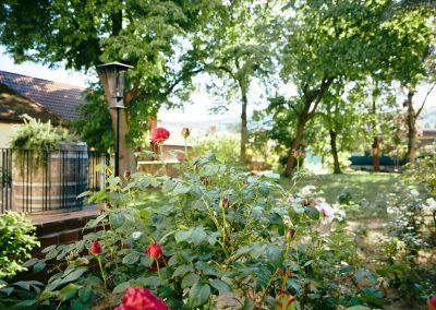 Villa Ludwig Garten