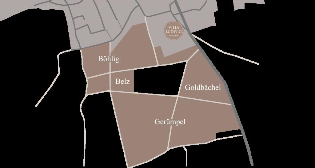 Weinlagen Villa Ludwig